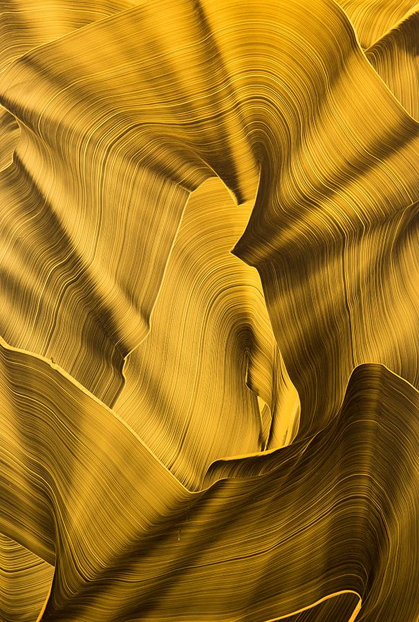 2014, Öl und Acryl auf Plexiglas, 100 x 70 cm